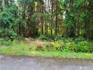 Picture of Point Roberts Parcel Number 405302-518242